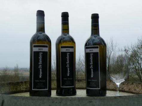 Baneberg wijn