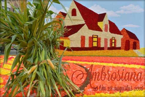 Ambrosiana Lochristi begoniafestival