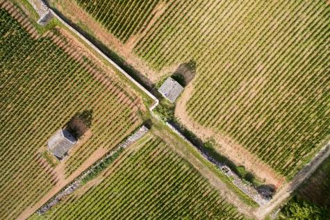 Ontdek Bourgogne