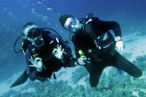 Blue Explorers Lochristi