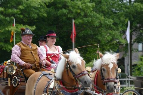 Flanders Horse Event 2016 koetsenparade