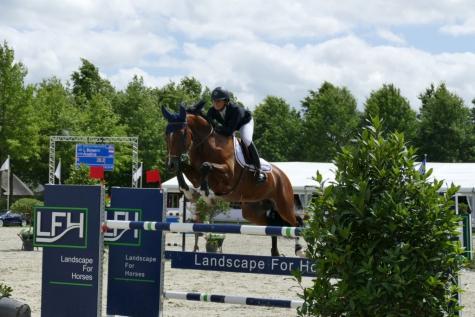 Flanders Horse Event Beervelde