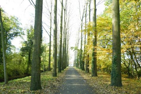 Herfst Lochristi