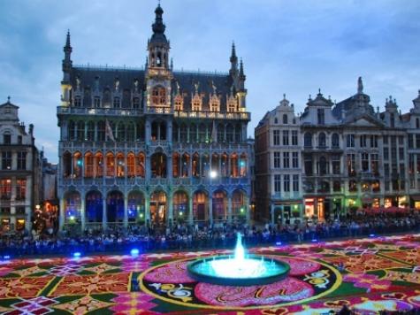 Begoniatapijt Brussel