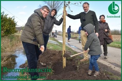 Boomplantactie Zaffelare 2019