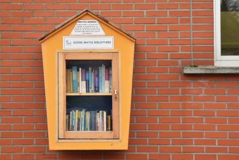 Boekenkastje © Bennie Vanderpiete