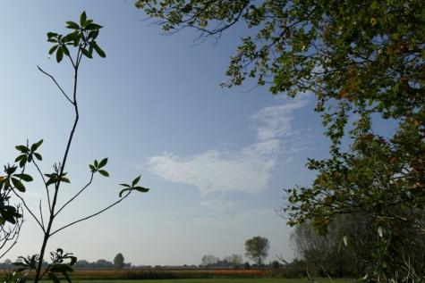 Lochristi begoniaveld herfst