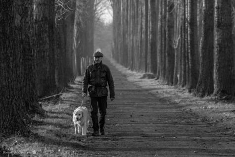 Gedichtendag Evarist laat zijn hond uit