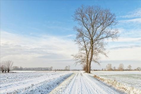 LochristinaarVoorUDoorU-Foto © Bennie Vanderpiete