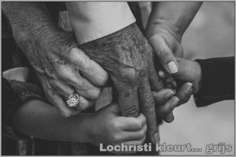 Lochristi kleurt grijs - Liz Brenden (Unsplash)