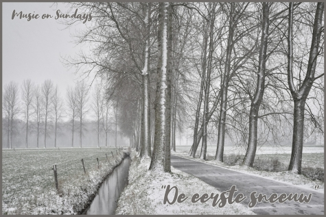 De eerste sneeuw Lochristi  © Bennie Vanderpiete