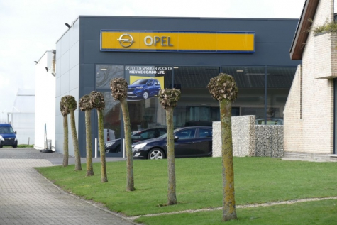 Opel Van Acker Lochristi