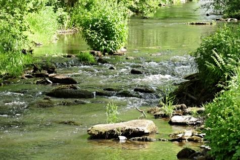 Our Ardennen