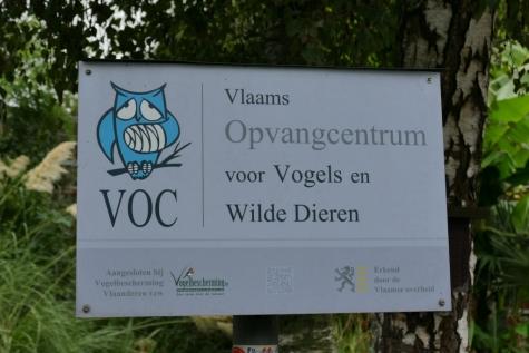 Vogelopvangcentrum Merelbeke in nood