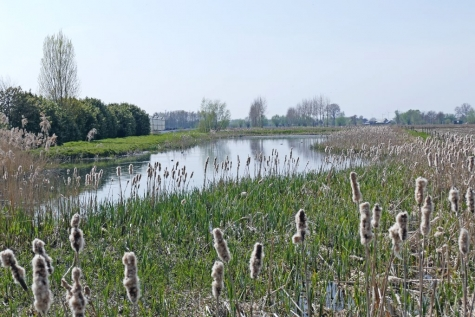 antibiotica oppervlaktewater grondwater