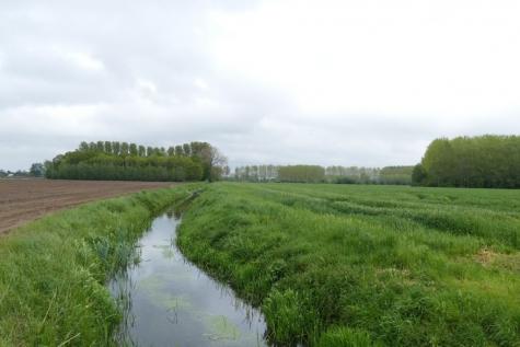 Water en pesticiden