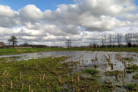water wateroverlast