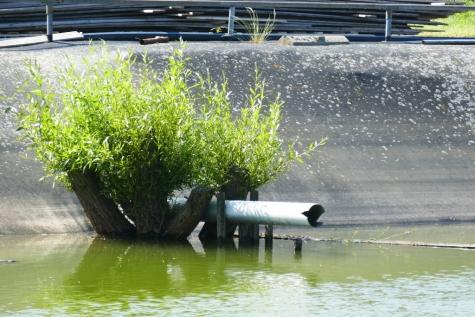 opvangbekken water serres