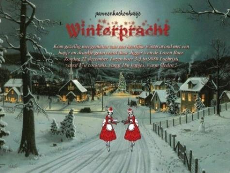Winterpracht 2013 in De Lozen Boer